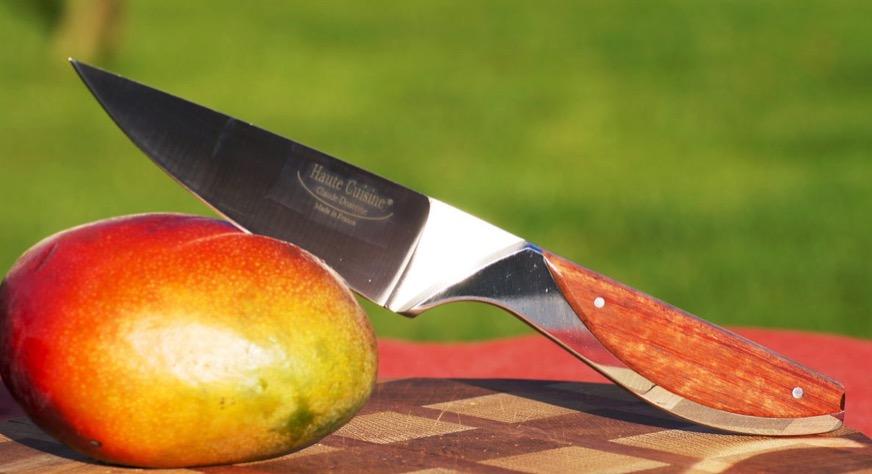 Küchenmesser Haute Cuisine